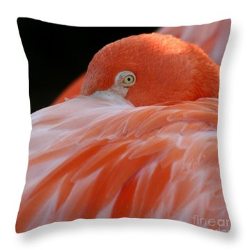 Throw Pillow featuring the photograph Flamingo At Rest. by Bob and Jan Shriner