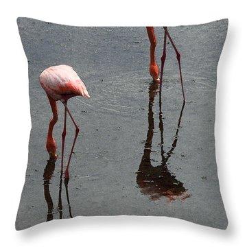 Flamingo Ballet Throw Pillow