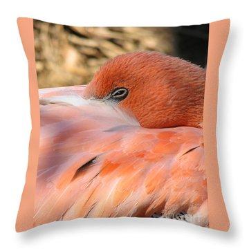Throw Pillow featuring the photograph Flamingo by Eva Kaufman