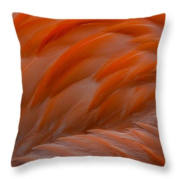 Flamingo Feathers Throw Pillow by Michael Hubley