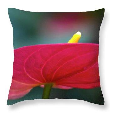 Flamingo Flower 1 Throw Pillow by Heiko Koehrer-Wagner