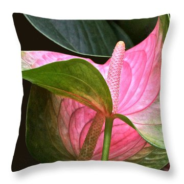 Flamingo Flower Throw Pillow