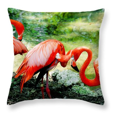 Flamingo Friends Throw Pillow by Beverly Stapleton