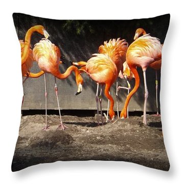 Flamingo Hangout Throw Pillow