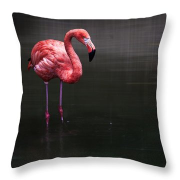 Flamingo  Throw Pillow by Hannes Cmarits