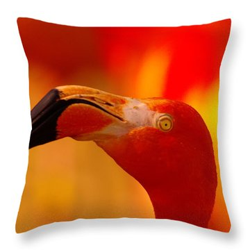 Flamingo  Throw Pillow by Jeff Swan