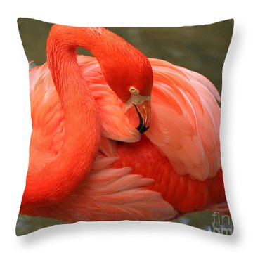 Flamingo Throw Pillow by Larry Nieland