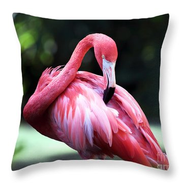 Flamingo Scratch Throw Pillow