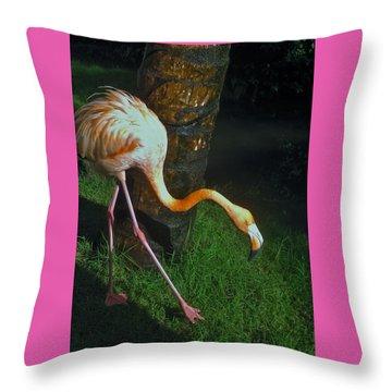 Flamingo Search Party Throw Pillow