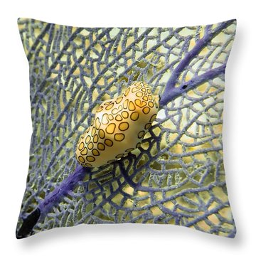 Flamingo Tongue Snail On Purple Fan Coral Throw Pillow by Amy McDaniel