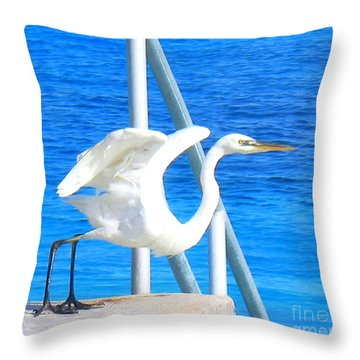 Flaps Up Throw Pillow by Patti Whitten