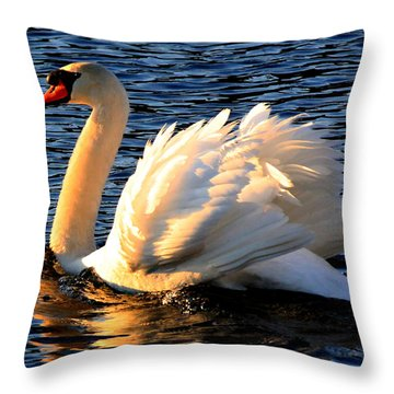 Throw Pillow featuring the photograph Flashy Display by Ola Allen