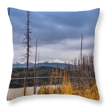 Flathead National Forest Throw Pillow