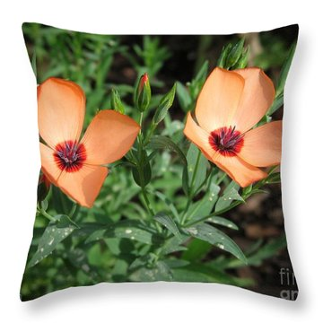 Flax Named Charmer Salmon Throw Pillow by J McCombie
