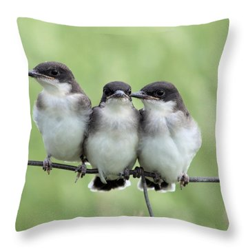 Fledged Siblings Throw Pillow