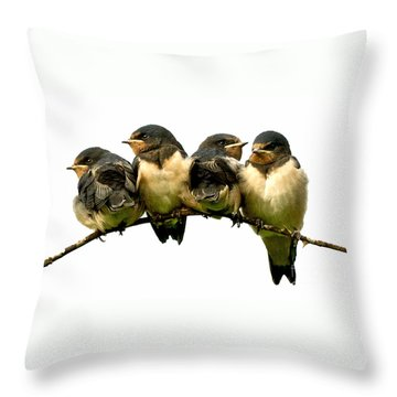 Fledglings Throw Pillow