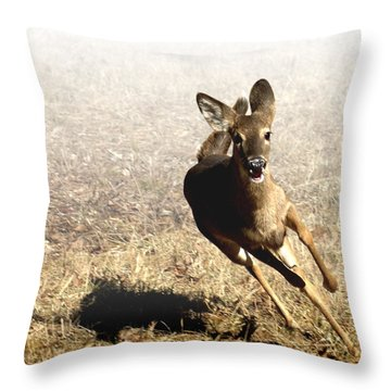 Flee Throw Pillow by Bill Stephens