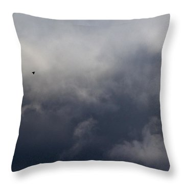 Fleeing The Storm   Throw Pillow