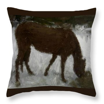 Throw Pillow featuring the painting Flicka by Bruce Nutting
