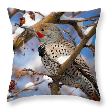 Flicker In Snow Throw Pillow