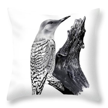 Throw Pillow featuring the drawing Flicker by Terry Frederick