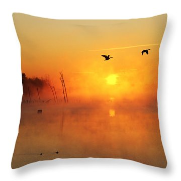 Flight At Sunrise Throw Pillow
