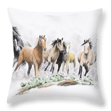 Flight For Freedom Throw Pillow