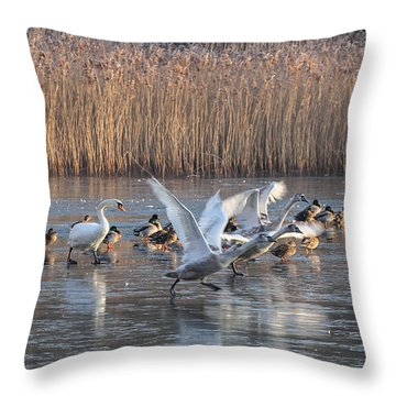 Flight From Ice Throw Pillow
