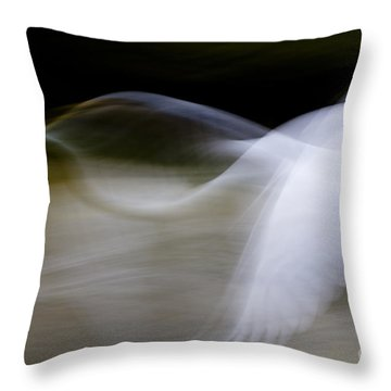 Throw Pillow featuring the photograph Flight Of Fancy by Anne Rodkin