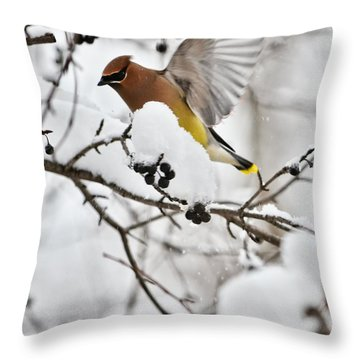 Flight Of The Bird Throw Pillow