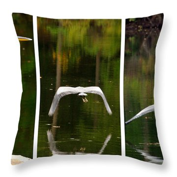 Flight Of The Crane Throw Pillow by Davina Washington