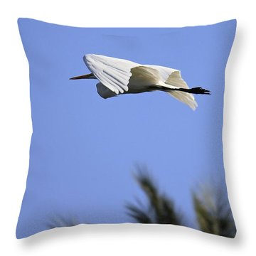 Throw Pillow featuring the photograph Flight Of The Egret by Penny Meyers