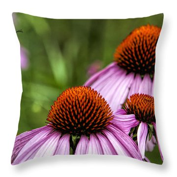 Flight Of The Honey Bee Throw Pillow by John Crothers