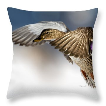 Flight Of The Mallard Throw Pillow