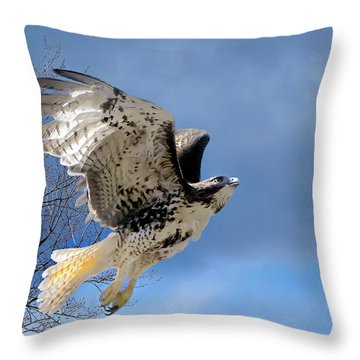Flight Of The Red Tail Throw Pillow