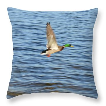 Flight On Waves Throw Pillow by Sonali Gangane