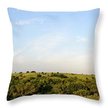 Flint Hills 2 Throw Pillow