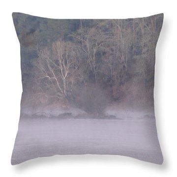Throw Pillow featuring the pyrography Flint River 10 by Kim Pate