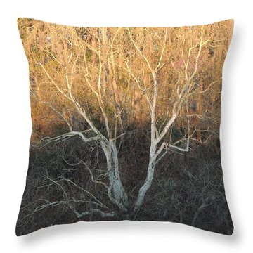 Throw Pillow featuring the photograph Flint River 12 by Kim Pate