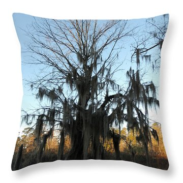 Throw Pillow featuring the photograph Flint River 13 by Kim Pate