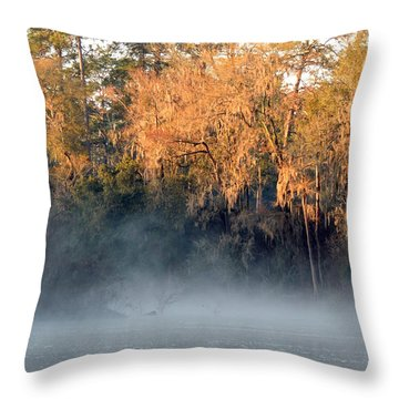 Throw Pillow featuring the photograph Flint River 14 by Kim Pate