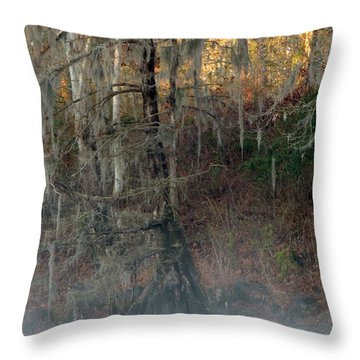 Throw Pillow featuring the photograph Flint River 15 by Kim Pate
