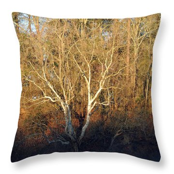 Throw Pillow featuring the photograph Flint River 16 by Kim Pate