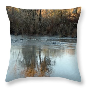 Throw Pillow featuring the photograph Flint River 17 by Kim Pate