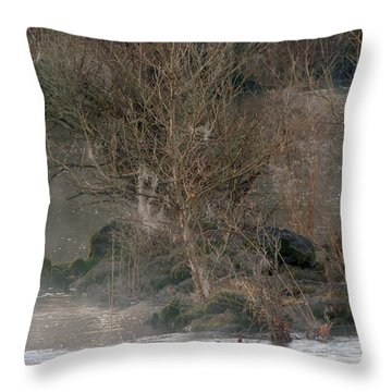 Throw Pillow featuring the photograph Flint River 19 by Kim Pate