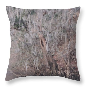 Throw Pillow featuring the photograph Flint River 2 by Kim Pate