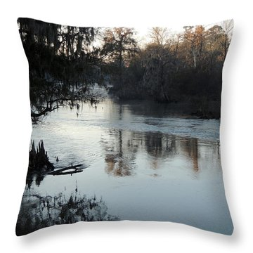 Throw Pillow featuring the photograph Flint River 20 by Kim Pate