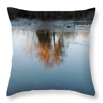 Throw Pillow featuring the photograph Flint River 21 by Kim Pate