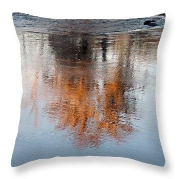 Throw Pillow featuring the photograph Flint River 22 by Kim Pate