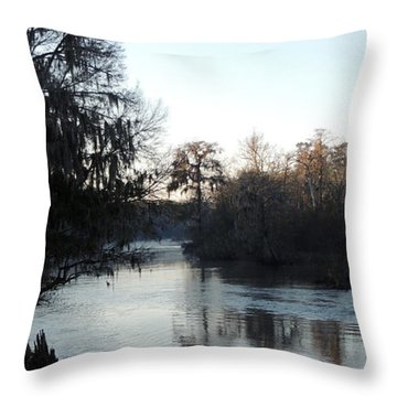 Throw Pillow featuring the photograph Flint River 23 by Kim Pate